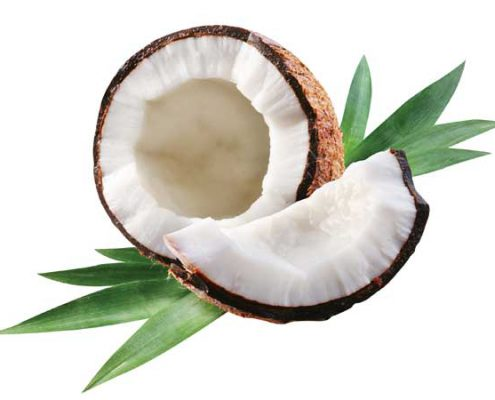 Coconut oil ingredient used by Bites of Delight Gluten Free Lebanon